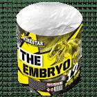 THE EMBRYO (nc)